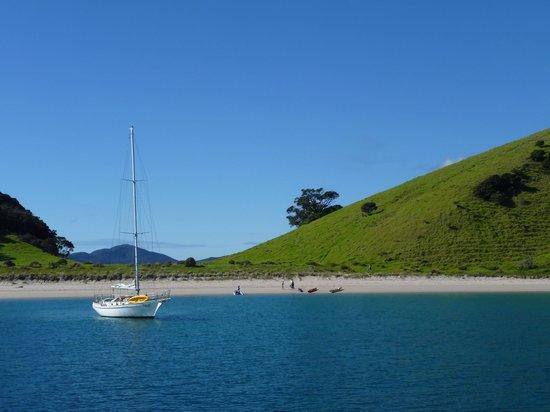 Vigilant Yacht Charters: At anchor