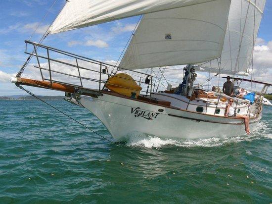Vigilant Yacht Charters: Full Sails