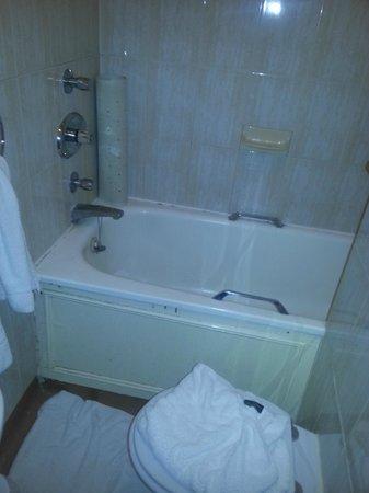 Berjaya Eden Park: Bathroom