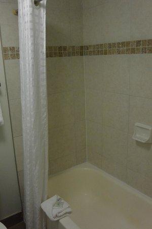Hawthorn Suites by Wyndham Orlando Convention Center: shower
