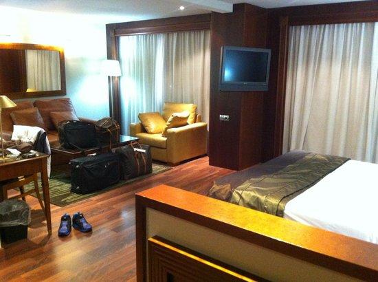 Hotel Plaza Andorra : chambre