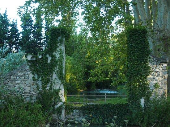 Chateau de Roussan: the grounds