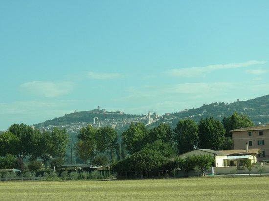 Azienda Agrituristica Il Moraiolo: dintorni