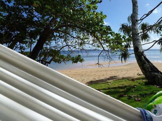 Lawaki Beach House: Hammock next to beach
