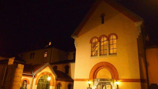 Hôtel Le Sauvage : L'hôtel de nuit