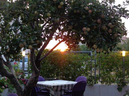 Villa Pitomcia: Esterno Ristorante
