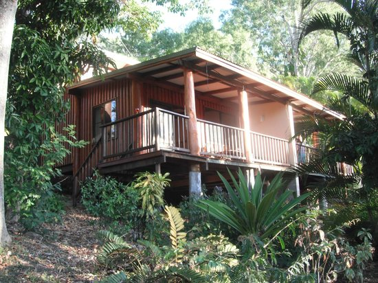 Milkwood Lodge Rainforest Retreat