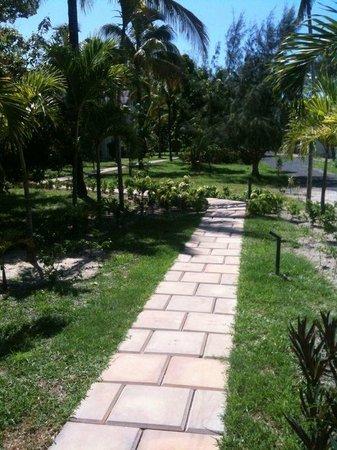 Ambre Mauritius: Il giardino per andare alle camere