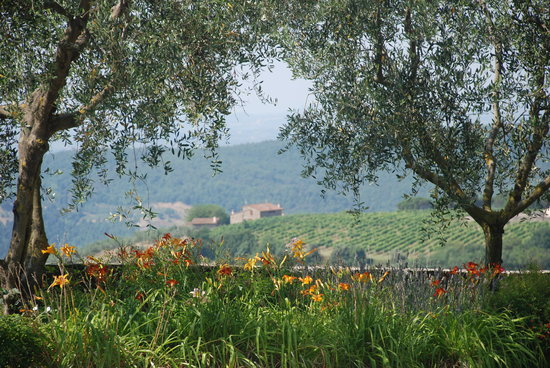Hotel Paggeria Medicea: View of Tuscan countryside from hotel terrace