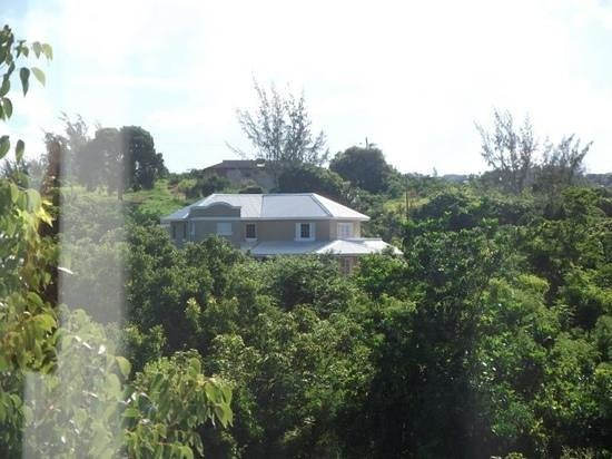 Sugar Cane Club Hotel & Spa: view from bedroom