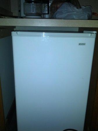 Crystal Beach Hotel: Refrigerator
