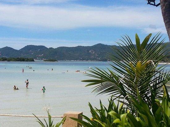 Chaba Samui Resort: dal resort