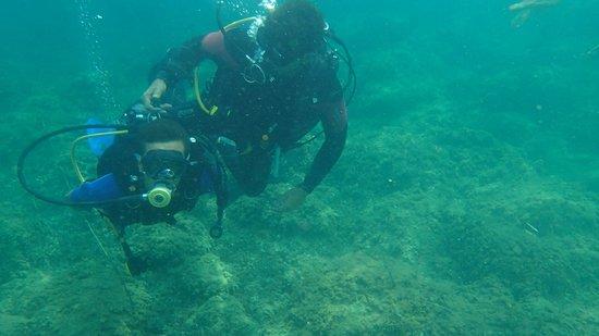 Cetaria Diving Center : marco e luca