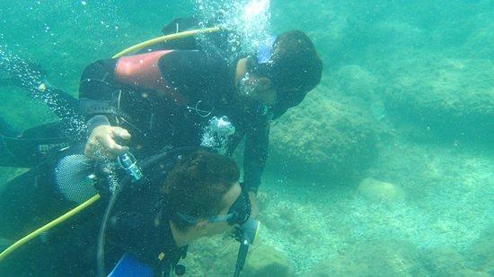 Cetaria Diving Center : sott'acqua