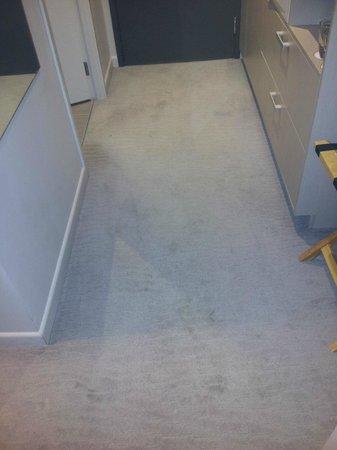 Sudima Auckland Airport Hotel: Dirty Carpet