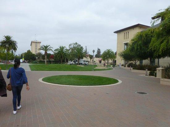 サンタクララ大学