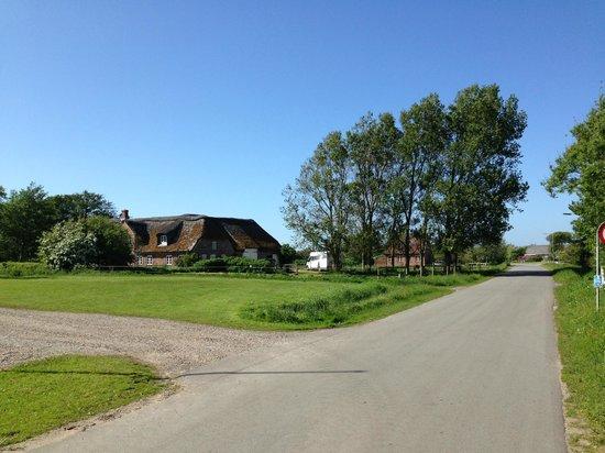 Reiterhof am Meer: Ruhig und idyllisch gelegen - auf der Straße vor dem Hof fährt ungefähr zweimal am Tag ein Auto.