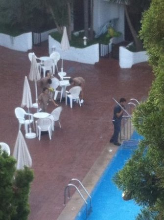 Sol Cala d'Or Apartamentos: cleaners working their magic every Friday morning