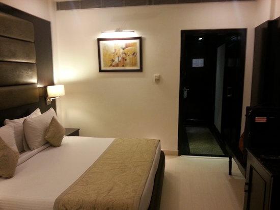 Hotel Shanti Palace (Mahipalpur): Standard room, Shanti Palace Delhi