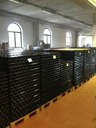 Azienda Agricola Losi Querciavalle: Waiting to be ready for selling..