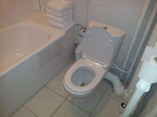 Hotel d'Azur: WC, nostante sia pulito ci sono tubi ovunque