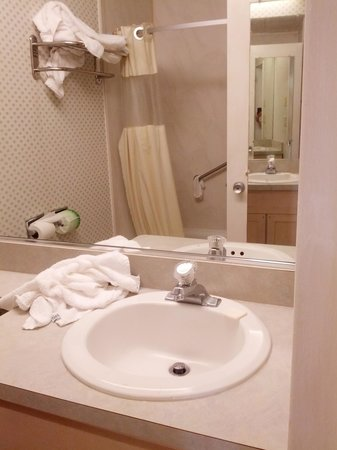 Howard Johnson Hotel - Toms River : Bathroom