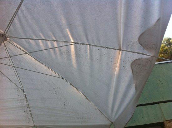 Belambra Clubs - Le Clavary: terrasse