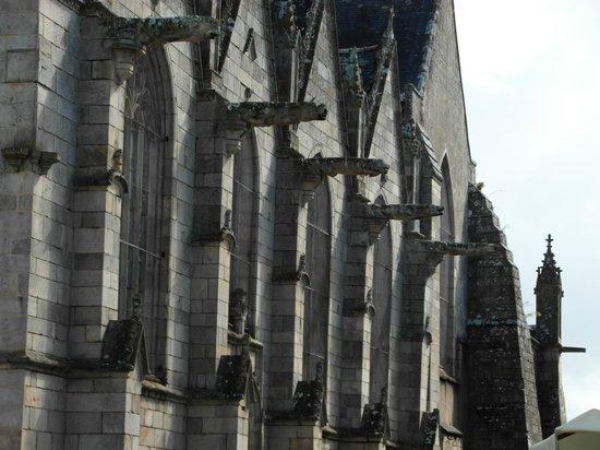 Basilique Notre Dame du Roncier : Particolari dei doccioni laterali