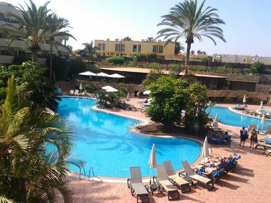 Tripadvisor Corralejo Hotels