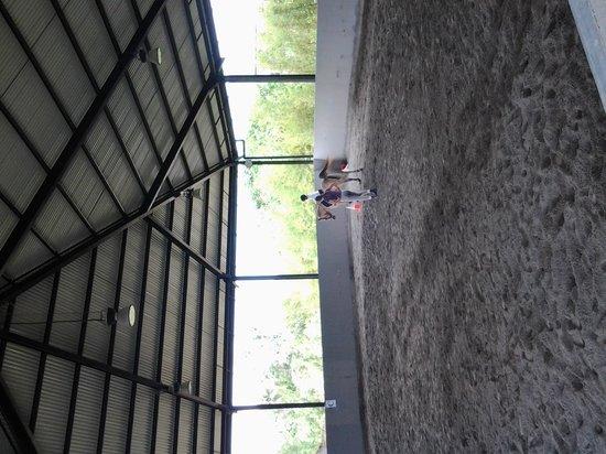 Bali Equestrian Centre: covered lesson area