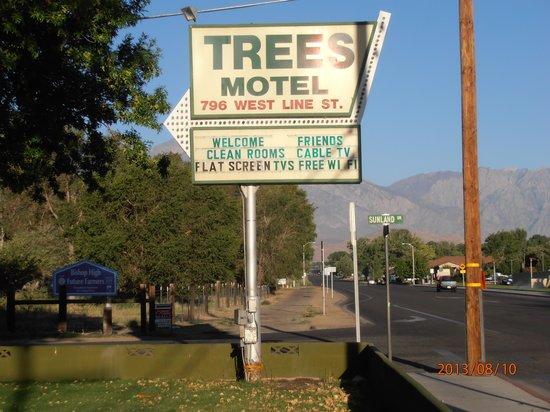 The Trees Motel : Insegna