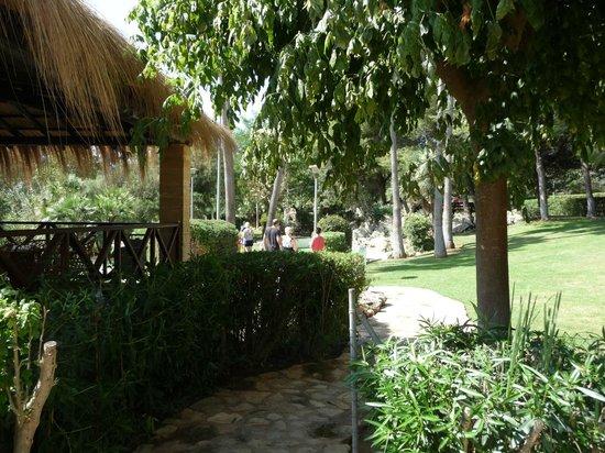 Protur Safari Park Aparthotel : Jardin