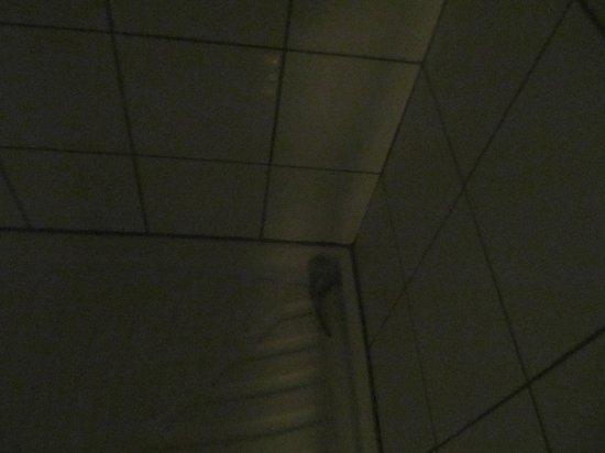Friend's Hostel: Dove si trova il miscelatore della doccia comune!