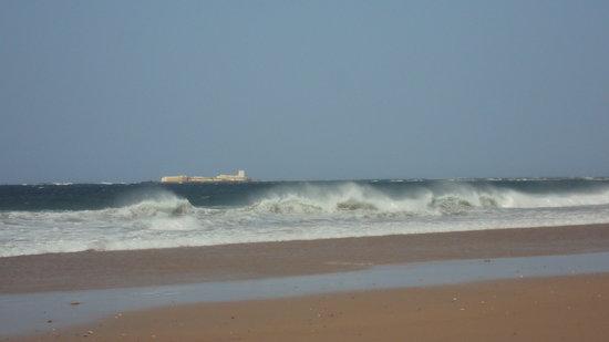 Playa de la Barrosa: PLAYA LA BARROSA