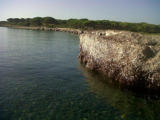 Spiaggia foto di sa marina campeggio villaggio holiday for Alloggi budoni