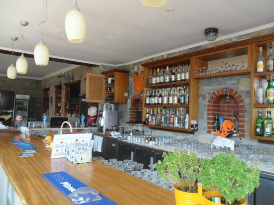 Toloman Hotel: Toloman bar area