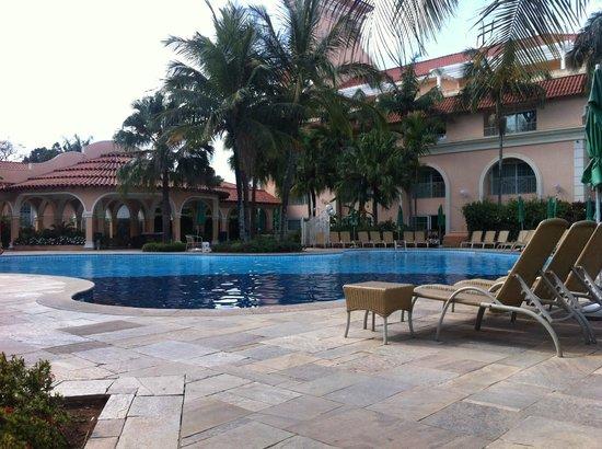 G Panda Palm Plaza piscina criança -...