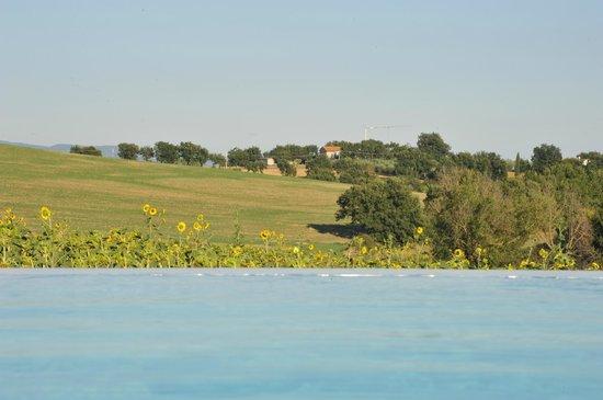 B&B Villa Luogoceleste : uitzicht aan zwembad