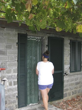 L'Ancora: Entrance to our place with grapes above!