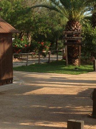 Hotel Manar: Hotel grounds.