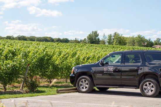 Wine Tours Toronto - Private Tours