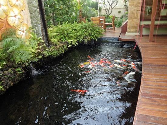Bussaba Bangkok : garden