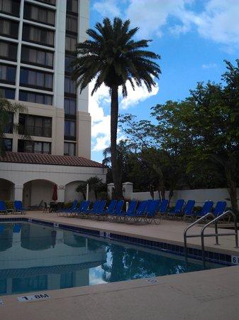 Palm Beach Gardens Marriott: By the pool