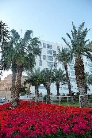 Isrotel Ganim : Шикарная клумба с геранью около отеля. Вода для полива - дорогое удовольствие