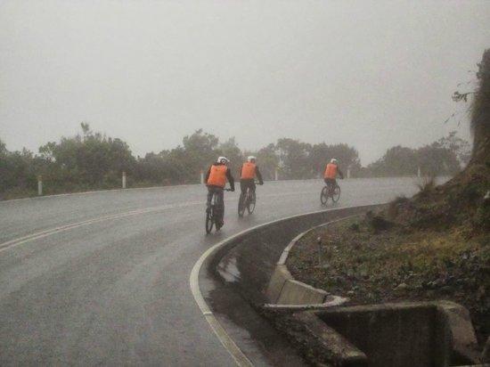 Lorenzo Expeditions: Downhill biking, through the fog and the rain!