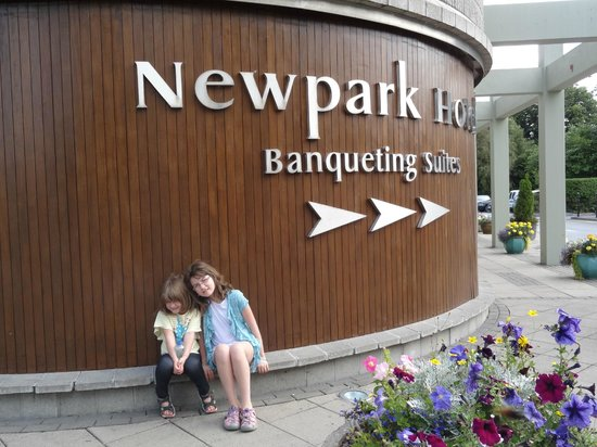 Newpark Hotel : In front of hotel