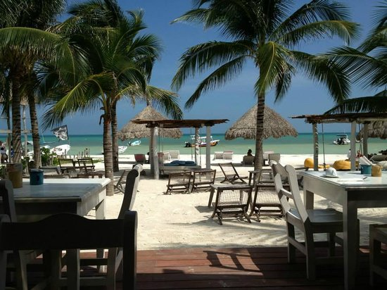 Holbox Hotel Casa las Tortugas - Petit Beach Hotel & Spa : View while having breakfast at the hotel restaurant.