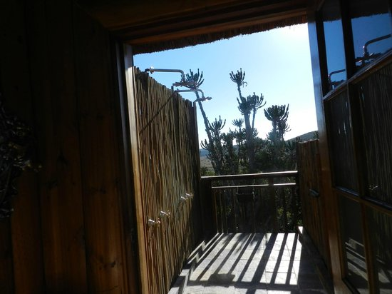 Addo Afrique Estate: Shower with a view
