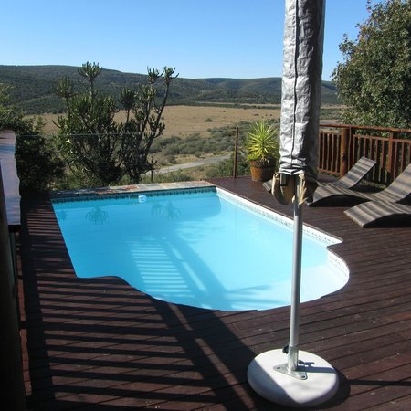Addo Afrique Estate: Pool
