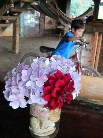 Finca Neblina del Bosque : Nemo riding his bike and the lovely fresh table flowers